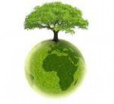 """""""Do Re Mi – rozśpiewana ekologia"""" – audycja na I-szy semestr"""